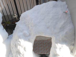 雪だるまつくーろー♪_c0223192_22181550.jpg