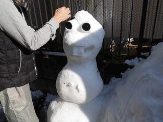 雪だるまつくーろー♪_c0223192_22182492.jpg