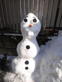 雪だるまつくーろー♪_c0223192_22182786.jpg