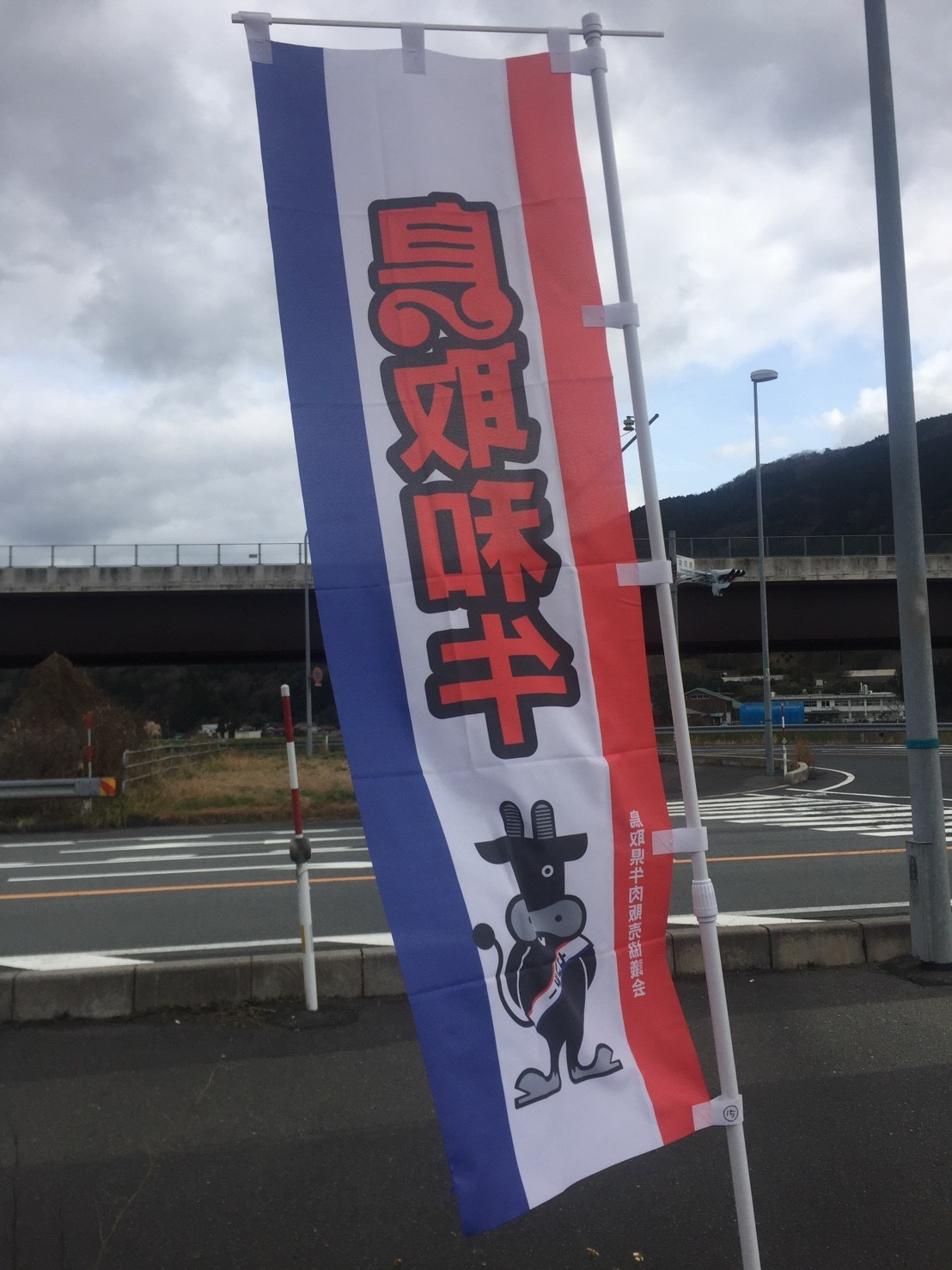 エアーズロック風紋_e0115904_14360626.jpg