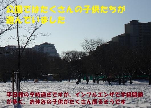 f0121712_06561252.jpg