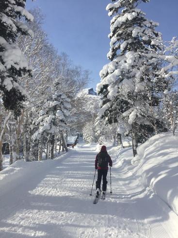 """2018年1月『行く年、来る年、雪山に遊ぶ』 January 2018 \""""The Snow Season Has Come\""""_c0219616_18055894.jpg"""