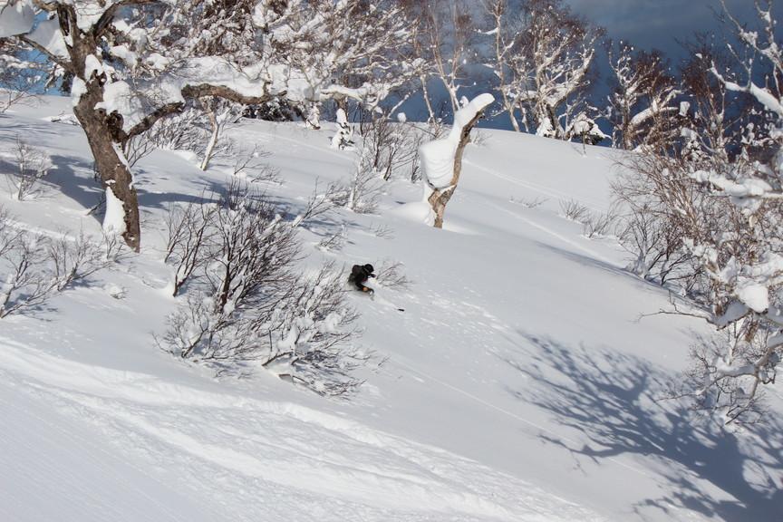 """2018年1月『行く年、来る年、雪山に遊ぶ』 January 2018 \""""The Snow Season Has Come\""""_c0219616_18190238.jpg"""