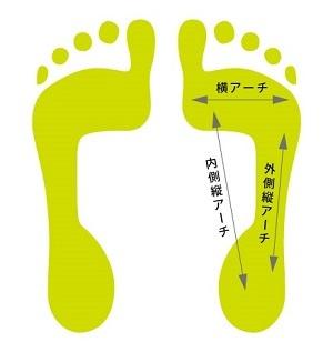 足のアーチについて_a0322418_14530385.jpg