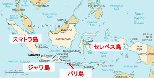24節季珈琲の旅 インドネシア・スマトラ(島)マンデリン G-1  (マンデリンコーヒー)_b0136223_18171752.jpg
