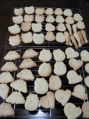 クッキー屋さん_f0129726_21593346.jpg