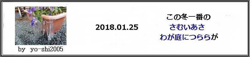 e0033229_1911395.jpg