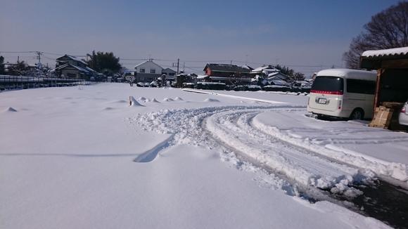 雪の影響_e0040673_10564473.jpg