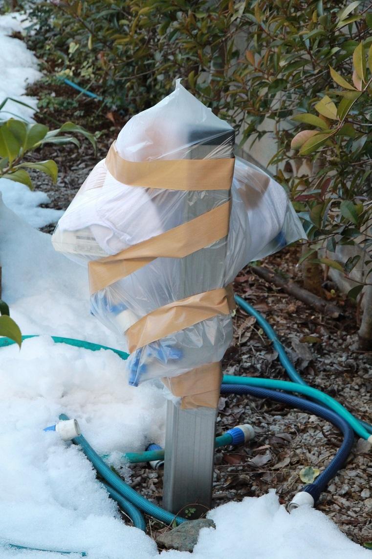 体も心も凍ってしまいそうな庭_a0107574_16262770.jpg