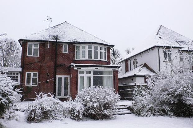 雪つながりで_b0234690_11144619.jpg