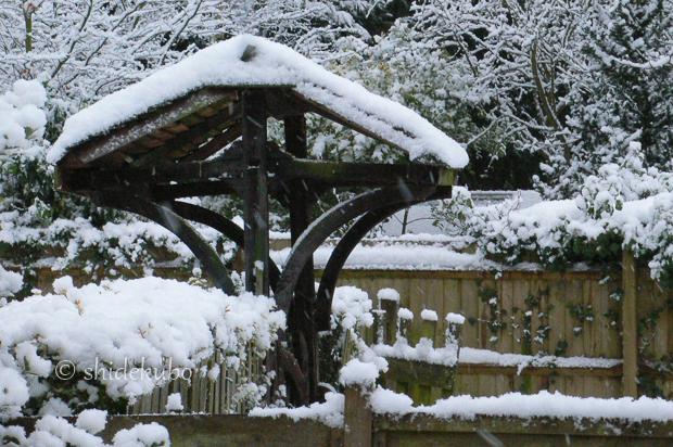 雪つながりで_b0234690_11150597.jpg