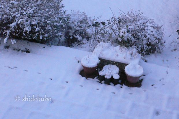 雪つながりで_b0234690_11151139.jpg