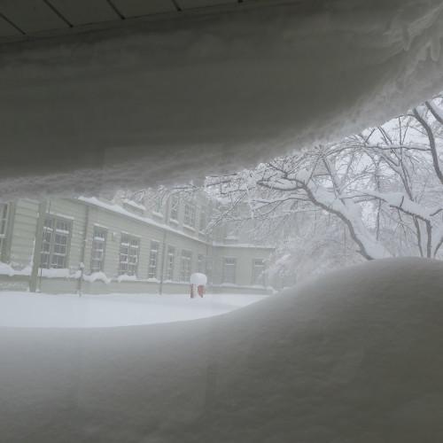 師の教え 想う学び舎 窓の雪_c0075701_11302093.jpg