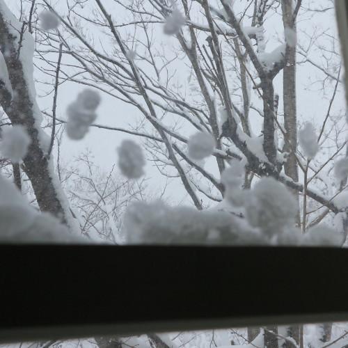 師の教え 想う学び舎 窓の雪_c0075701_11303750.jpg