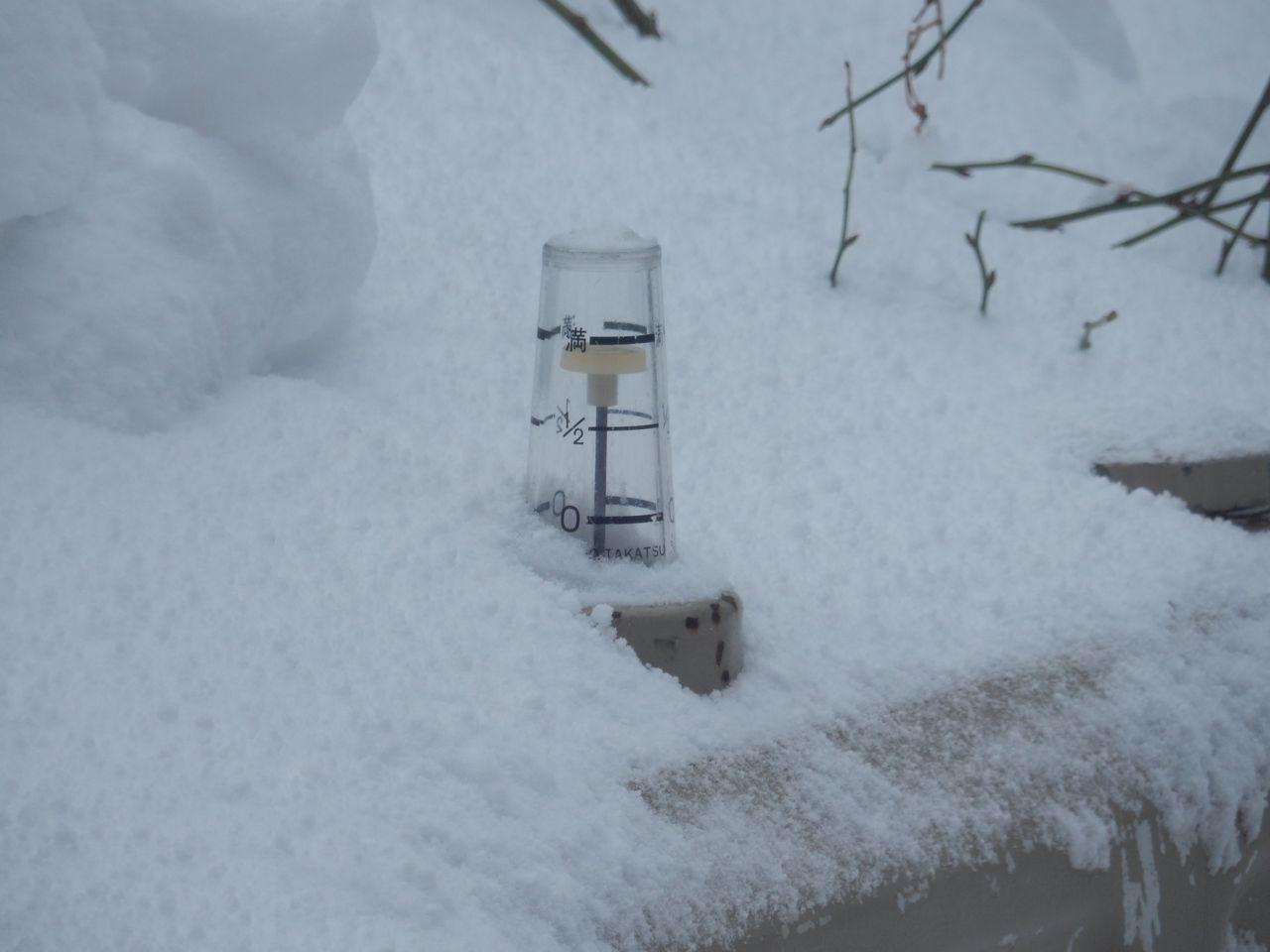 寒さの次はドカ雪_c0025115_21571029.jpg