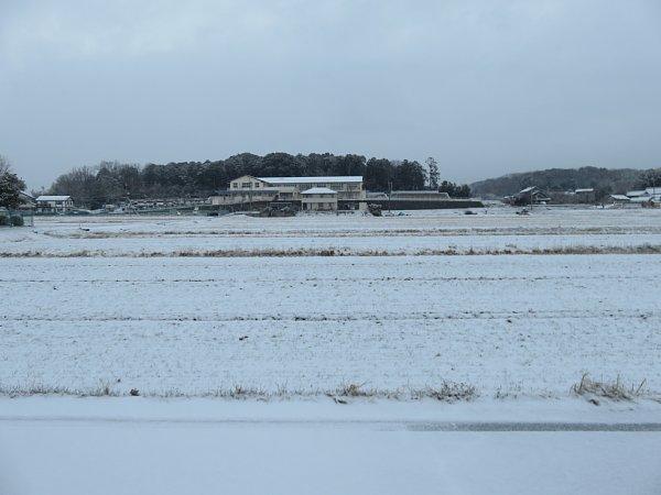 2018年1月26日 雪の朝 _b0341140_1082198.jpg
