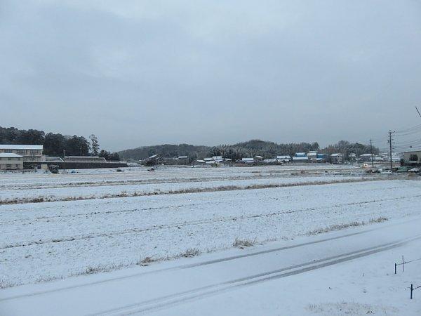 2018年1月26日 雪の朝 _b0341140_1091338.jpg