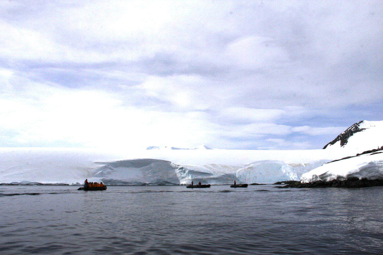 南極への旅(12) Port Lockroy & Jougla Point_c0011649_12163683.jpg