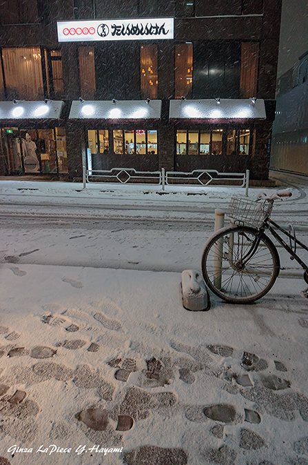 東京の風景 雪のたいめいけん_b0133053_00074402.jpg