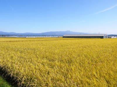 七城米大好評発売中!長尾農園さんは平成30年度の米作りをスタートしました!天地返しの様子(2018前編)_a0254656_17255179.jpg