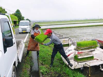 七城米大好評発売中!長尾農園さんは平成30年度の米作りをスタートしました!天地返しの様子(2018前編)_a0254656_17500614.jpg