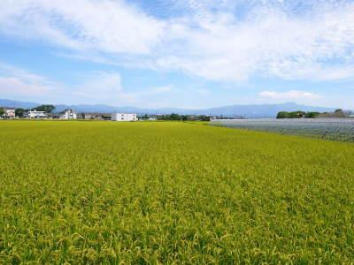 七城米大好評発売中!長尾農園さんは平成30年度の米作りをスタートしました!天地返しの様子(2018前編)_a0254656_18022005.jpg