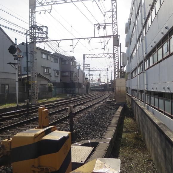 疏水沿いをただただ歩いたという記事なので大して面白くありません 京都市_c0001670_20400192.jpg
