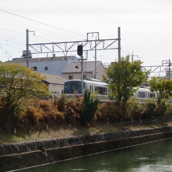 疏水沿いをただただ歩いたという記事なので大して面白くありません 京都市_c0001670_20410730.jpg