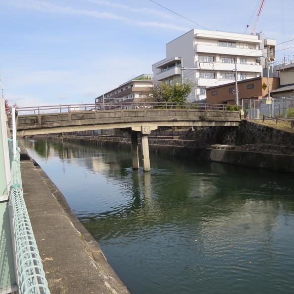 疏水沿いをただただ歩いたという記事なので大して面白くありません 京都市_c0001670_20411601.jpg