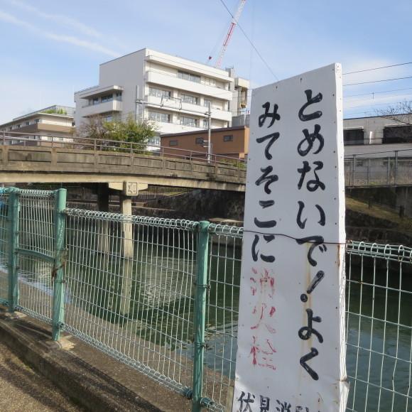 疏水沿いをただただ歩いたという記事なので大して面白くありません 京都市_c0001670_20413887.jpg