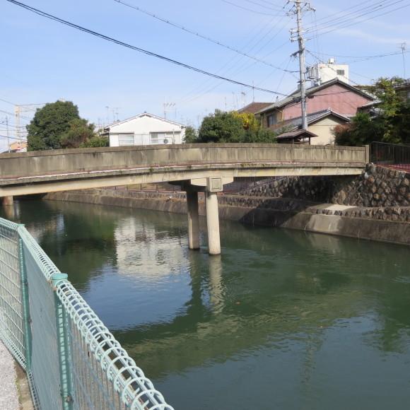 疏水沿いをただただ歩いたという記事なので大して面白くありません 京都市_c0001670_20423499.jpg