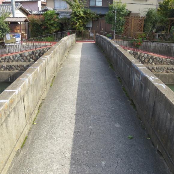 疏水沿いをただただ歩いたという記事なので大して面白くありません 京都市_c0001670_20432357.jpg