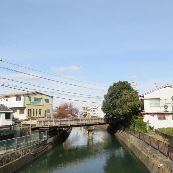 疏水沿いをただただ歩いたという記事なので大して面白くありません 京都市_c0001670_20434474.jpg