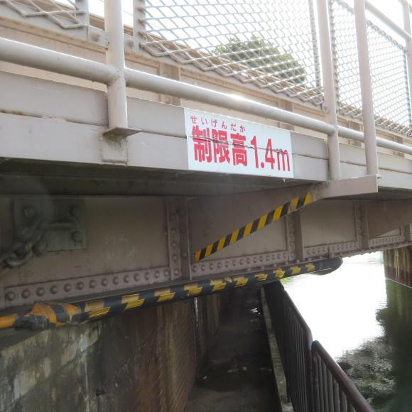 疏水沿いをただただ歩いたという記事なので大して面白くありません 京都市_c0001670_20445716.jpg