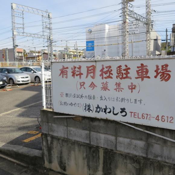 疏水沿いをただただ歩いたという記事なので大して面白くありません 京都市_c0001670_20452267.jpg