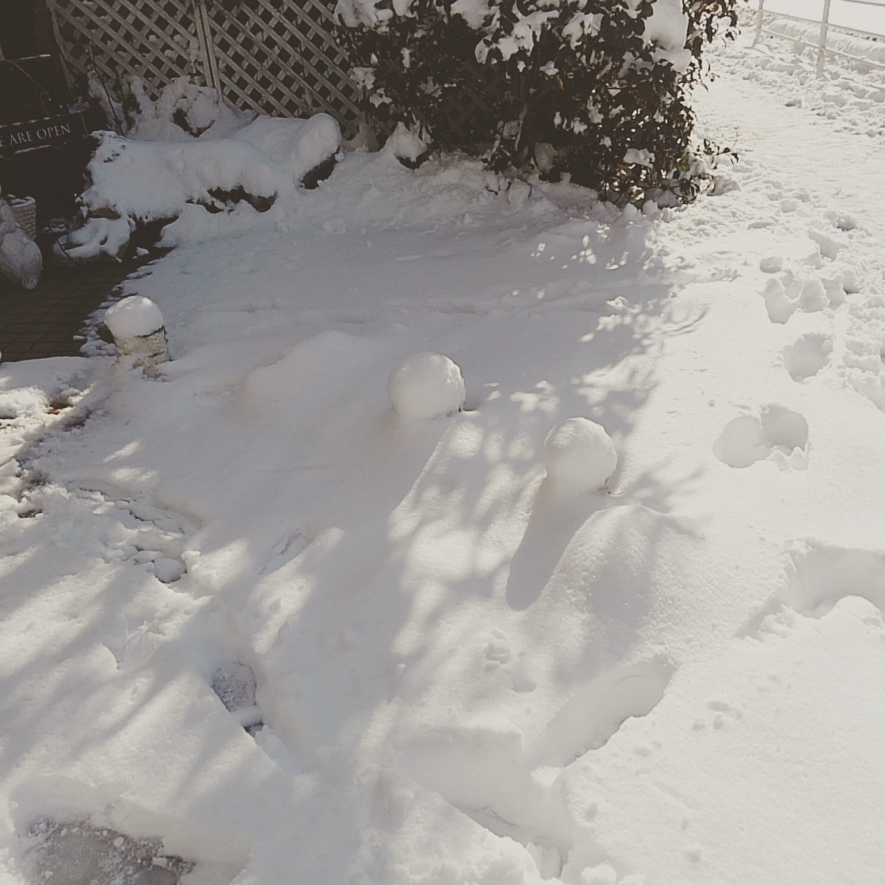 雪の後。パート2_b0210688_15534233.jpg