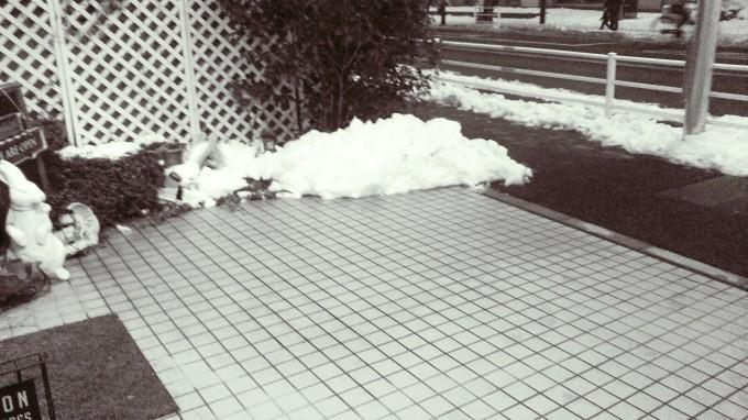 雪の後。パート2_b0210688_16495777.jpg