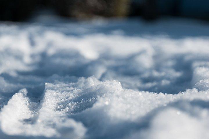朝日に輝く雪の公園_d0353489_10551570.jpg