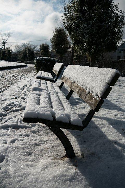 朝日に輝く雪の公園_d0353489_11183858.jpg