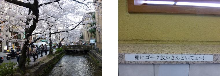 京都観桜編(16):本満寺(15.3)_c0051620_21345072.jpg