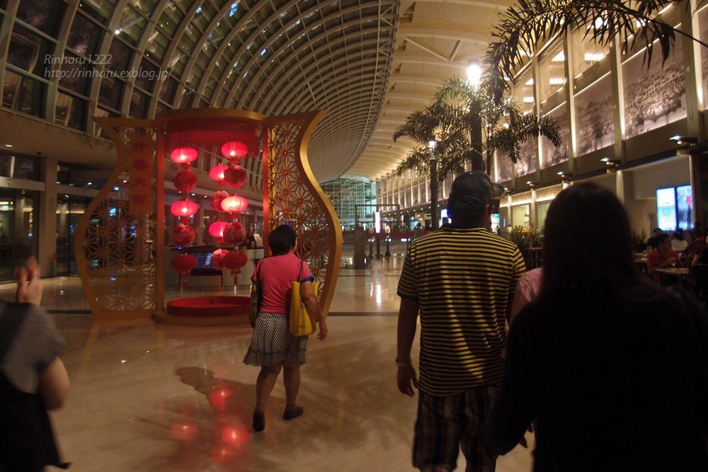 2014.2.16 マリーナベイサンズ (Marina Bay Sands)_f0250322_20412034.jpg