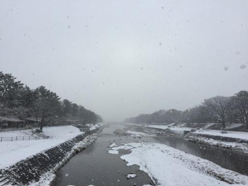雪の京都_c0223630_12153379.jpg