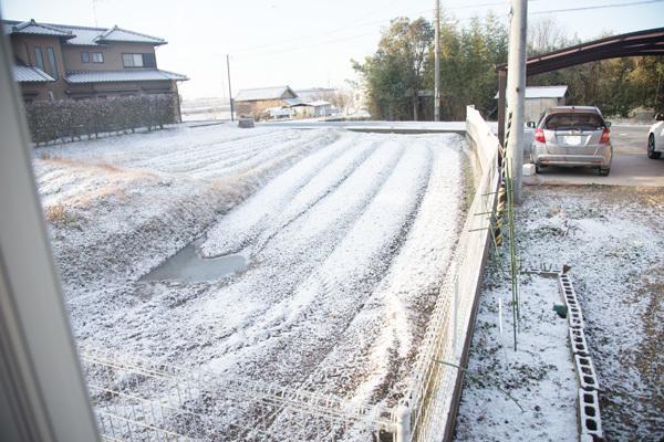 雪が積もった〜_d0355333_19175493.jpg