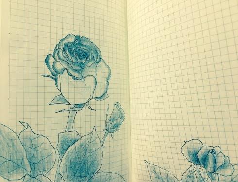 薔薇。_c0160745_21453946.jpg