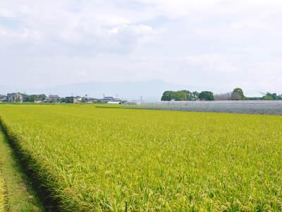 七城米大好評発売中!長尾農園さんは平成30年度の米作りをスタートしました!天地返しの様子(2018後編)_a0254656_17271327.jpg