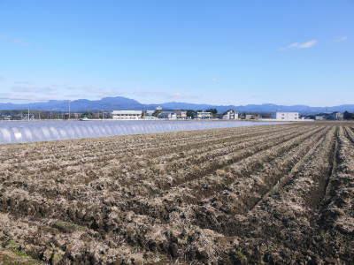 七城米大好評発売中!長尾農園さんは平成30年度の米作りをスタートしました!天地返しの様子(2018後編)_a0254656_17365964.jpg