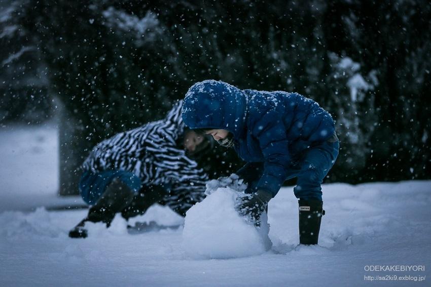 雪とインフルエンザ_d0162864_07023422.jpg