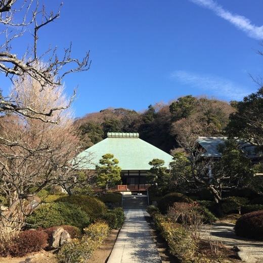 鎌倉を好きかというと、という本音とこれからの希望。_e0380666_17573049.jpg