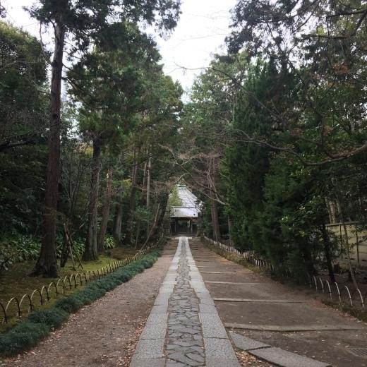 鎌倉を好きかというと、という本音とこれからの希望。_e0380666_18210101.jpg