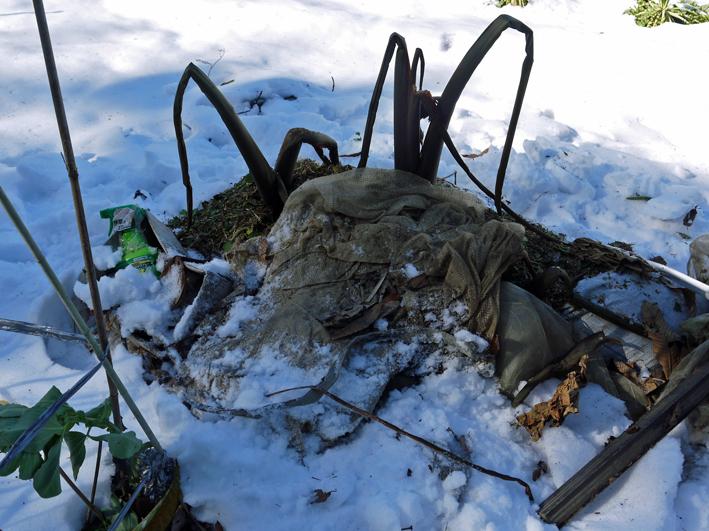 大雪と今季最強の寒波襲来でサトイモが心配だ1・24_c0014967_09004647.jpg